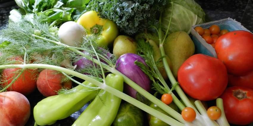 légumes verts bio